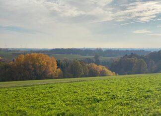 Premium-Wanderweg Hexenklamm und die Aussicht über Pirmasens und Frankreich