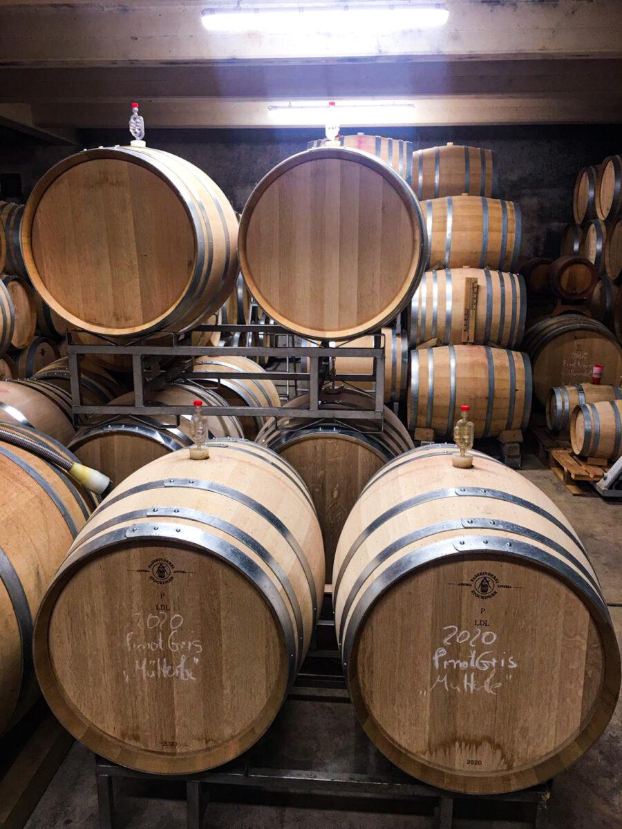 Weinfässer mit den edlen Tropfen aus der Pfalz